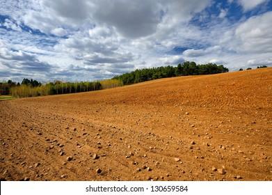 Moravian fields.Czech Republic