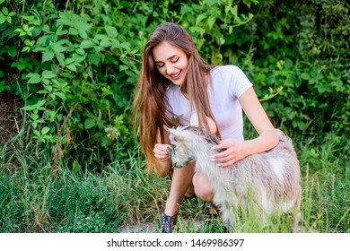 More care. farm and farming concept. Animals are our friends. happy girl love goat. village weekend. summer day. Love and protect animals. contact zoo. veterinarian lamb goat. woman vet feeding goat.