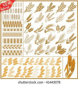 More new wheat. Super mega collection abstract illustration sign brown wheat on white background.