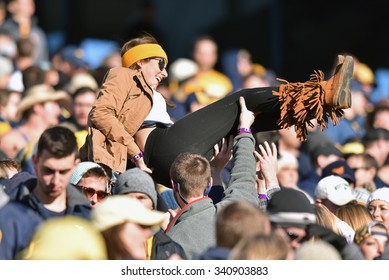 MORGANTOWN, WV - NOVEMBER 14: A fan in the WVU student section crowd surfs to celebrate a Mountaineer win in the football game November 14, 2015 in Morgantown, WV.
