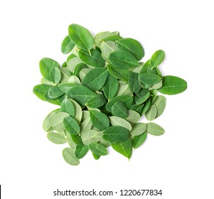 Moringa leaves on white background. top view