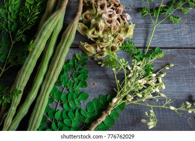 Moringa, Moringa oleifera leaves, Moringa seed,flowers and leaves of Moringa
