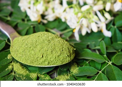 Moringa powder in spoon on fresh Moringa leaves and Moringa seed and flowers.