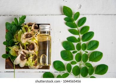 moringa seed oil,  moringa fresh leaves, Moringa oleifera Lam