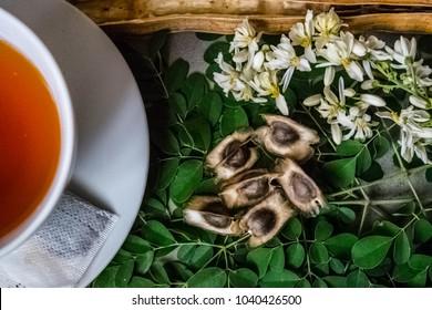 Imágenes, fotos de stock y vectores sobre Moringa Flowers