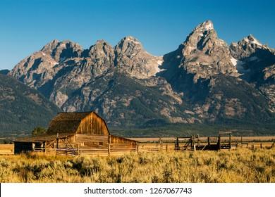 Mormon Row Barn in Autumn Colors, Grand Teton National Park, Wyoming