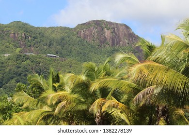 Morne Seychelois National Park, Mahé Island, Seychelles.