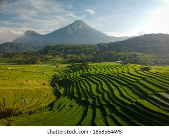 Morning atmosphere in the rice fields of Selotapak village, Trawas sub-district, Mojokerto regency, Indonesia - Shutterstock ID 1858564495