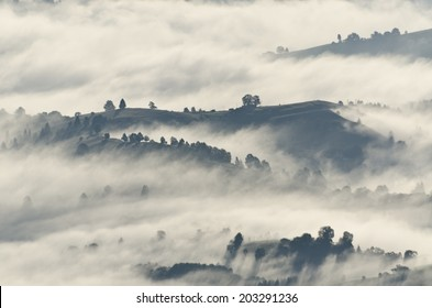 Morning clouds over mountains and forests
