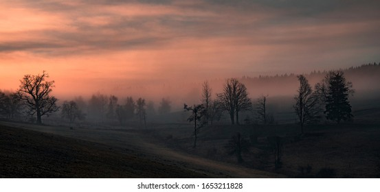 Morning colors in the fog - Shutterstock ID 1653211828