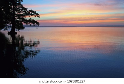 Morning colors - Reelfoot Lake State Park, Tennessee