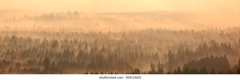 Morning fog in back-light during sunrise over the mountains of the northern Black Forest in Germany.