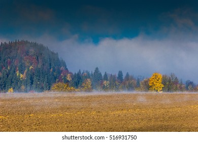 Morning in fog behind village Kriva fields and meadows at autumn