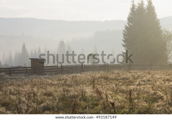 Morning fog in the Carpathian village. Ukraine.