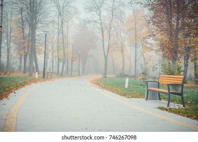 Morning fog in the city park of rest