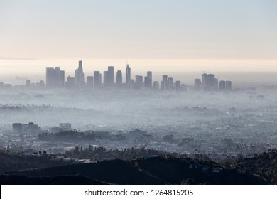 Morning fog cityscape view of downtown Los Angeles from popular Griffith Park near Hollywood California.