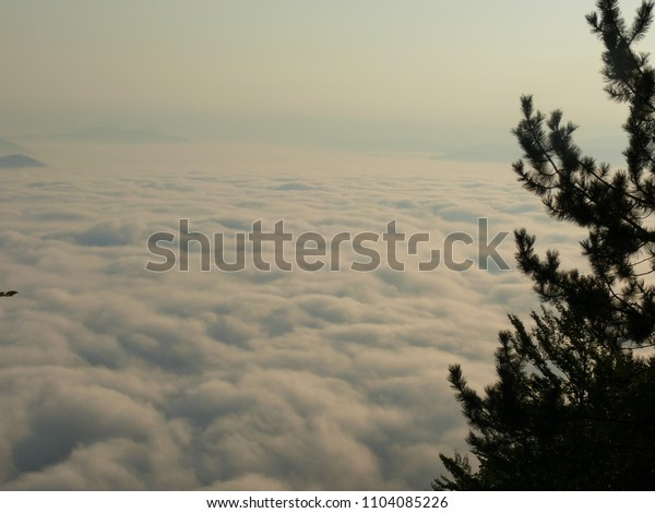 Morning fog in mountain