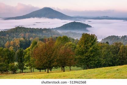 Morning fog in national park Czech (bohemian) switzerland, Czech republic