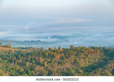 Morning fog in Northern Thailand. In the winter with colorful sky background,  dense fog in the morning. early morning. forest hiding in the fog. forest path