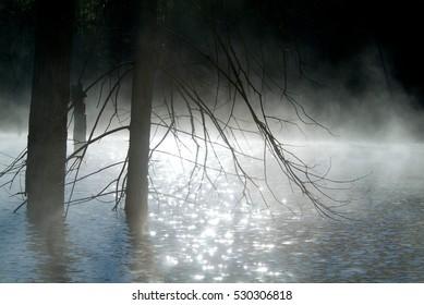 Morning fog on the river sunrise shot