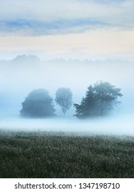 Morning fog over the field and forest. Pure morning light. Tecklenburg, Germany