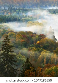 Morning fog over the Gauja river and forest. Clear sky and colorful trees. Sigulda, Latvia