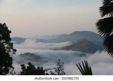 Morning Fog in Ranong
