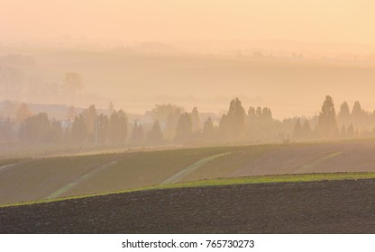 Morning foggy view of beautiful agicultural fields - South Moravia, Czech Republic