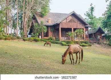 The morning fresh air Farmhouse