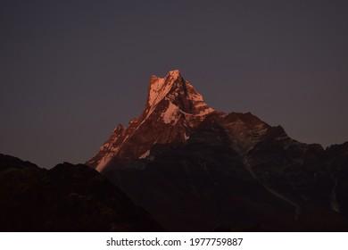 Morning front view of reddish- blueish Machapuchre mountain from Mardi, Kaski, Nepal. Mardi is one of the popular site to view Machapuchre mountain (Himal).