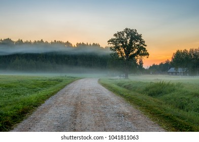 Morning in the Gauja National Public Park, Vidzeme district, Latvia. Concept of ecologically clean tourism in Europe