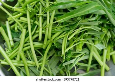 Morning glory vegetable