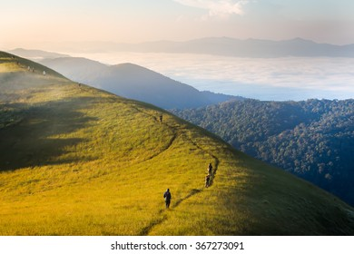 Morning in green fields and mist with mountain at Doi Mon Jong, Thailand