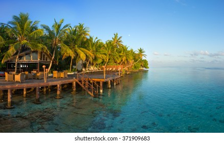 Morning in a hotel in the Maldives. Palm trees, clear azure water, blue sky