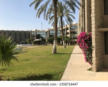 Morning in the Hotel in Saudi Arabia, March 18th, 2018, Al Jubail, 2019