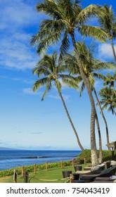 Morning image taken next to Maui's famous Kaanapali beach.