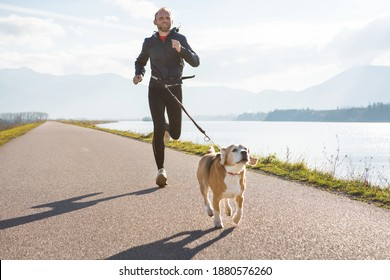 Morning jogging with a pet: a man running together with his beagle dog by the asphalt way with a foggy mountain landscape. Canicross exercises and active people and a dog concept image. - Shutterstock ID 1880576260