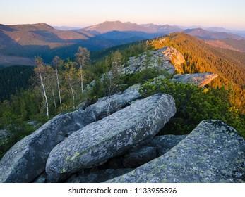 Morning landscape with morning light of the sun. Bushes mountain pine on the ridge. Carpathians, Ukraine, Europe