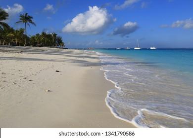 Morning landscape on ocean shore