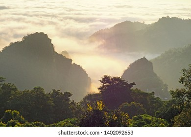 morning landscape with warm light and mist
