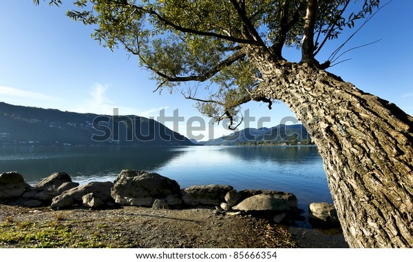 morning of late summer on the lake, landscape