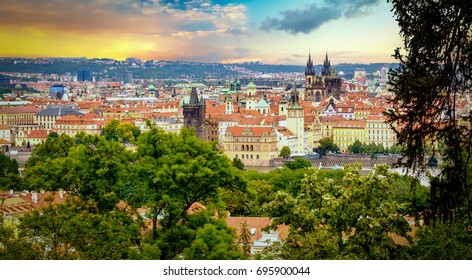 Morning light in the city of Prague, Czech Republic.  Aerial view of the city framed with tree leafs.