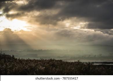 morning light at lake side