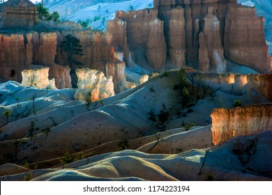 Morning light on Hoodoos of Bryce Canyon National Park, Utah