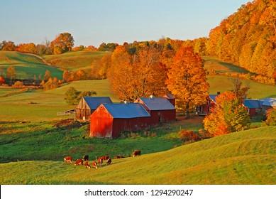 Morning Light On Jenne Farm