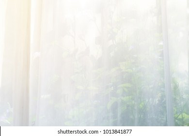 Morning light and white curtain in the room with window view blur background.