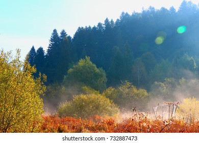 Morning mist in the Carpathians in the autumn.