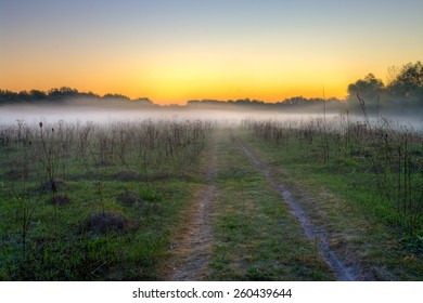 Morning mist and field road