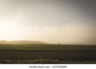 morning mist fog over meadows. warm tones in early sunlight in countryside area. panoramic view - vintage retro look