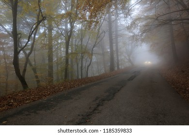 Morning mist and the light of a car headlight on a road in an autumn forest